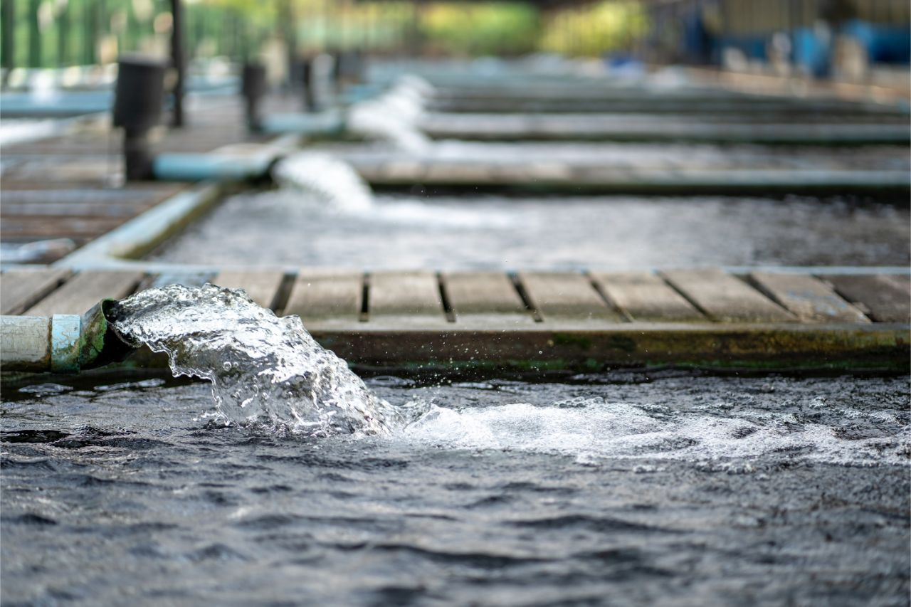 Industrial Park Water Management in the Philippines